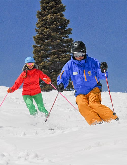 Private Ski Lesson Half Day